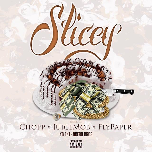 chopp fly paper slicey