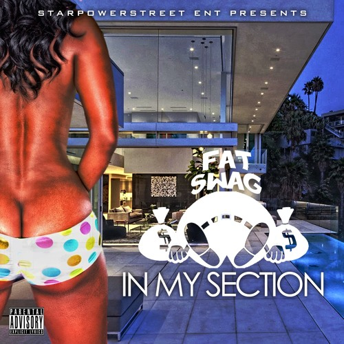 [Video] FatSwag1008 – In My Section + Mp3